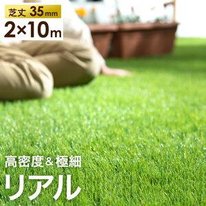 【送料無料】高密度43万本/m2 ...