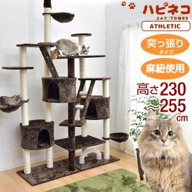 ★10/25(日)限定!全品P10倍★【送料無料】 キャットタワー 高さ230〜254cm 突っ張り 猫タワー 爪研ぎ 麻紐 ねこ 猫 ネコ キャットタワー つめとぎ ハンモック キャットハウス おしゃれ キャットタワー 猫タワー つっぱり