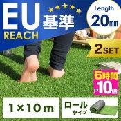 20mmリアル人工芝2個セット1×10