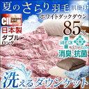 【送料無料/在庫有】 日本製 羽毛肌掛け布団 ダブル ロング CILレッドラベル 消臭 抗菌 【新技術アレルGプラス きになる臭いも改善】 300dp以上 洗える ホワイト ダウン 85% 肌掛け 羽