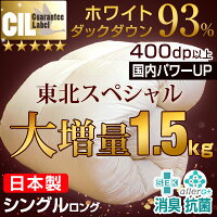 【超増量1.5kg】【送料無料】日...