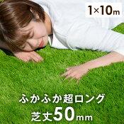 芝丈50mm人工芝