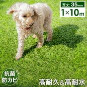 抗菌防カビ人工芝