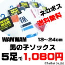 Wwm socks5assort