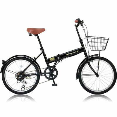 Raychell カゴ/泥除け標準装備・カギ/ライトが付属した20インチ折りたたみ自転車 FB-206R ブラック OTM-24212