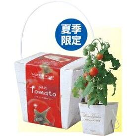その他 (まとめ)アーテック ベジコンテナ トマト 【×15セット】 ds-1565992