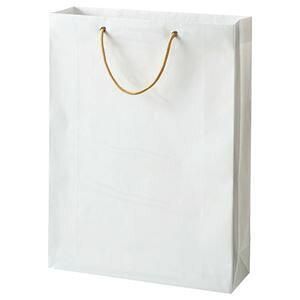 その他 (まとめ) TANOSEE ビニールカバー付手提げ袋 L ヨコ380×タテ510×マチ幅120mm 白無地 1パック(10枚) 【×2セット】 ds-1575038