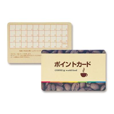 サンワサプライ レーザープリンタ用プラスチックカード LBP-ID01