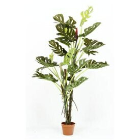その他 観葉植物/フェイクグリーン 【スプリット 22】 6号鉢対応 幅80cm 〔リビング ガーデニング〕 ds-1951453
