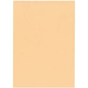 その他 北越コーポレーション 紀州の色上質A3Y目 薄口 びわ 1箱(2000枚:500枚×4冊) ds-2126867