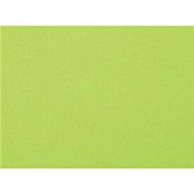 その他 (まとめ)大王製紙 再生色画用紙8ツ切100枚マスカット【×5セット】 ds-2169933