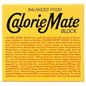 その他 (まとめ)大塚製薬 カロリーメイト ブロック チーズ味【×20セット】 ds-2182461