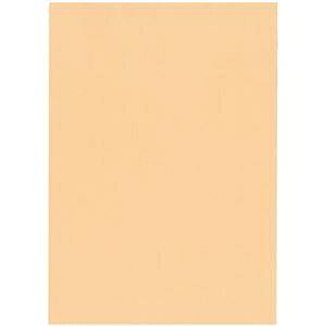 その他 (まとめ)北越コーポレーション 紀州の色上質A4T目 薄口 びわ 1箱(4000枚:500枚×8冊)【×3セット】 ds-2214570