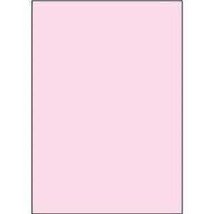 その他 (まとめ)ヒサゴ マルチプリンタ帳票 複写タイプA4 ノーカーボン ピンク BPC2000P 1冊(100枚)【×10セット】 ds-2309162