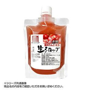その他 かき氷生シロップ 信州りんご紅玉 250g 3パックセット CMLF-1619402