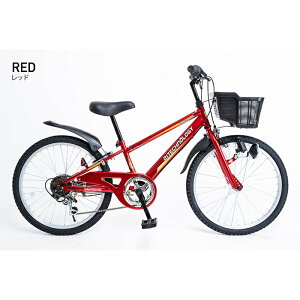 21Technology 22インチ子供マウンテンバイク(6段変速付き) (KD226-レッド) 4562320210706