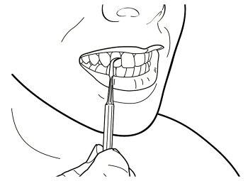 【送料無料】ピーティーアンドサヒインターナショナル[八鉄シリーズ]歯石とり88006[デンタルケア用品歯間ようじ歯垢取り除去]