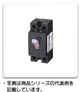 CB32VJ 2P 20A 日東工業 電圧引外し装置付安全ブレーカ フレームAF30、極数・素子数2P2E、定格電流20A