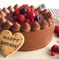 チョコレートケーキwithCrimsonberry14cm