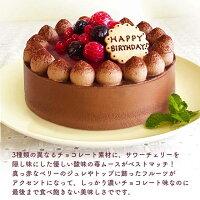 チョコレートケーキ説明