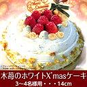 ホワイトクリスマスケーキ ショートケーキ キャンドル プレート ヒイラギ