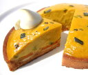 季節限定 かぼちゃカスタードの金色タルト14cmかぼちゃ パンプキン スイーツ ケーキ タルト ハロウィン 北海道産 九重栗カボチャ生クリ…