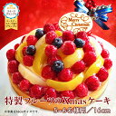 クリスマスケーキ 2020 予約 Xmas フルーツタルト フルーツケーキ 16cm xmasケーキ チ...