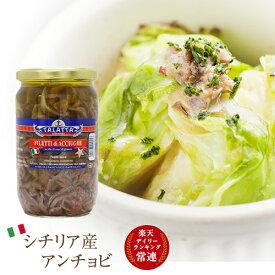 タラッタ イタリア シチリア産 ピース アンチョビ 720g 瓶 【業務用】 |イワシ 鰯 ソース 料理 調味料 業務用 大容量 レシピ