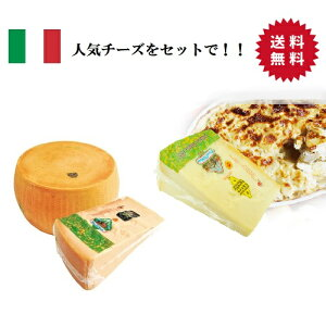 【送料無料】【2個セット】【冷蔵】グラナパダーノ(ブロック)&パルミジャーノ・レッジャーノ(ブロック)約1kg | フィオルディマーゾ社 FDM カフォルム ジャパン イタリア チーズ 業務用