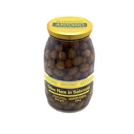 アルドイノ ブラックオリーブ ネレ 種付 1050g (650g)