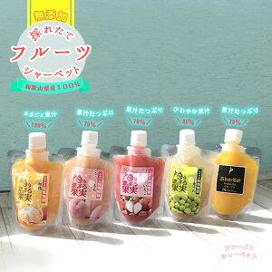 フルーツ果汁たっぷり『濃厚・和歌山フルーツシャーベット5個セット』和歌山県産フルーツ100%使用 冷凍便 イチゴ いちご オレンジ もも ピーチ 青梅 マンゴー 氷菓 果汁100 果