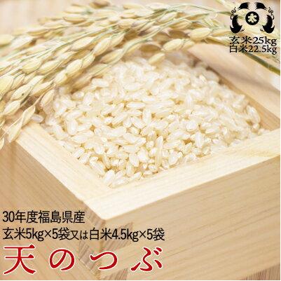 平成30年度福島県産 天のつぶ玄米25kg又は白米22.5kg送料無料 米【smtb-TD】【tohoku】【送料無料】
