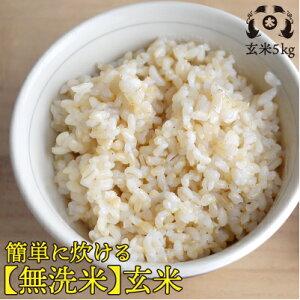 玄米なのに「無洗米」令和2年度福島県産 簡単に炊ける無洗米玄米5kg【HLS_DU】10P01Mar15