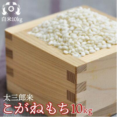 30年産太三郎米こがねもち白米10kg【smtb-TD】【tohoku】【送料無料】【HLS_DU】10P20Nov15