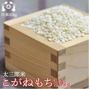 令和元年産太三郎米こがねもち白米10kg【smtb-TD】【tohoku】【送料無料】【HLS_DU】10P20Nov15