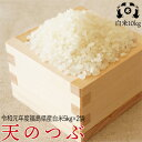 令和元年度福島県産 天のつぶ10kg(5kg×2袋)送料無料 米 【smtb-TD】【tohoku】【送料無料】