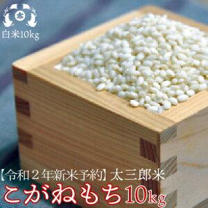 令和2年産太三郎米こがねもち白米10kg【smtb-TD】【tohoku】【送料無料】