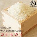 令和2年度福島県産 太三郎米コシヒカリ白米10kg(5kg×2袋)送料無料 米