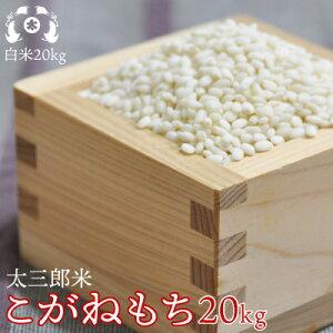 令和元年産太三郎米こがねもち白米20kg【smtb-TD】【tohoku】【送料無料】【HLS_DU】