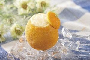 フレンズファクトリー)オレンジシャーベットラウンド1個 フレンズファクトリー シャーベット アイス 洋菓子 【冷凍食品】【業務用食材】【10800円以上で送料無料】