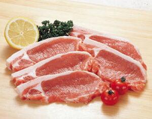 豚ロース・カツ用100g×5枚入 輸入 豚 生肉類【冷凍食品】【業務用食材】【10800円以上で送料無料】