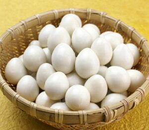 PLUSうずら卵水煮2号 ジェフダ 鶏卵・うずら卵 玉子 【常温食品】【業務用食材】【10800円以上で送料無料】