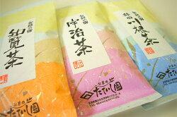 知覧茶【鹿児島県】100g