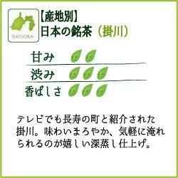 静岡掛川茶【深蒸し茶】