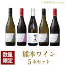 日本ワイン ワインセット 熊本県 熊本ワインファーム 菊鹿シャルドネ & マスカットベリーA & キャンベルアーリー & デラウェア & ナアイガラ 750ml 飲み比べ セット 無濾過 辛口