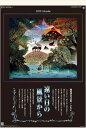 特大 フィルムカレンダー カレンダー2022年 令和4年 藤城清治 壁掛け 影絵 ふじしろせいじ 遠い日の風景から 特大サ…