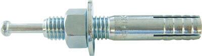 【送料無料!TRUSCO工具 激安特価(トラスコ中山)】TRUSCO オールアンカーCタイプ M10X60 10本入 C1060BT [202-6953] 【金属系アンカー】[C-1060BT]