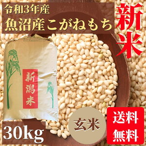 新米 もち米 魚沼産こがねもち 玄米 30kg 送料無料 最上級米 業務用 高級米