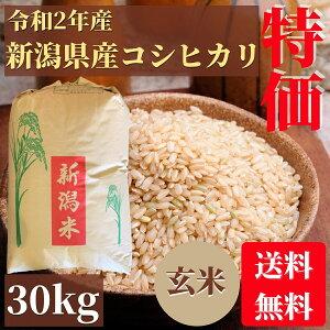 特別価格!訳あり 令和2年産 新潟県産コシヒカリ 玄米 30kg 二等米
