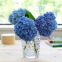 ナハトマン ボサノバ 82088 ベース 20cm 【花瓶】【ラッキーシール対応】